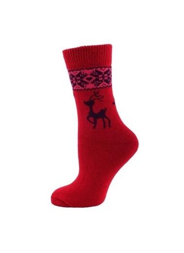 Panthzer  Casual Wool Socks Kadın Çorap Kırmızı/Lacivert Kırmızı